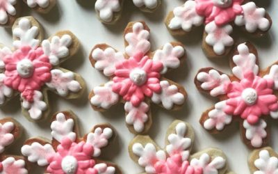 Cookies & Ceramics for Kids 3 PLUS 01-11-2020