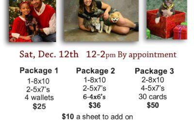 Holiday Portraits 12-12